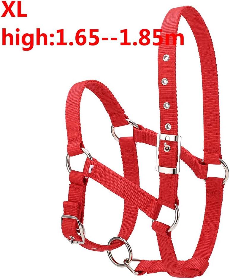 GCSEY Collar 6Mm Espesado Cabeza De Caballo del Cabestro Ajustable Creación De Equipos Brida Ronzal Hípica Compite con El Equipo De La Cuerda Caliente