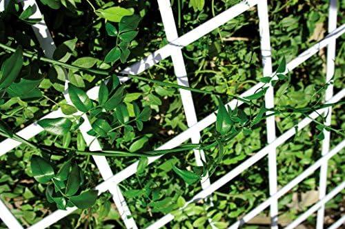 Catral 43060005 - Celosía deco PVC extensible, 1.0 x 300 x 100 cm, color blanco: Amazon.es: Jardín