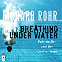 Breathing Under Water: Spirituality and the Twelve Steps Audiobook by Richard Rohr Narrated by John Quigley O.F.M.