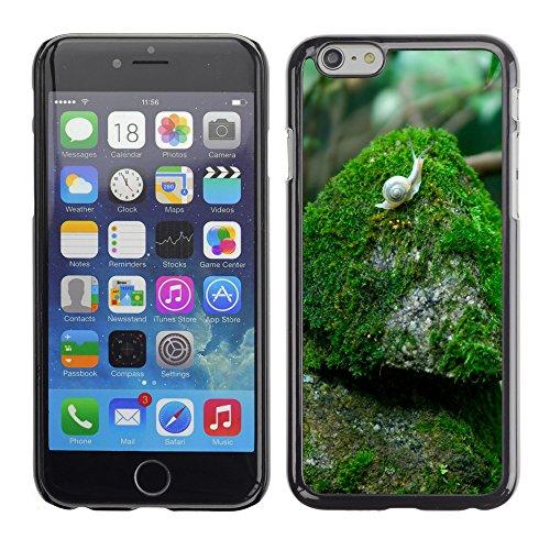 "Premio Sottile Slim Cassa Custodia Case Cover Shell // V00003843 escargot sur la pierre // Apple iPhone 6 6S 6G PLUS 5.5"""