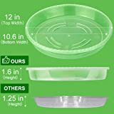 MUDEELA 6 Pack of 12 inch Plant Saucer, Durable