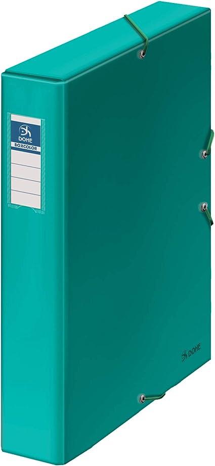 Dohe - Caja de proyectos - Lomo 5 cm - Verde claro: Amazon.es ...