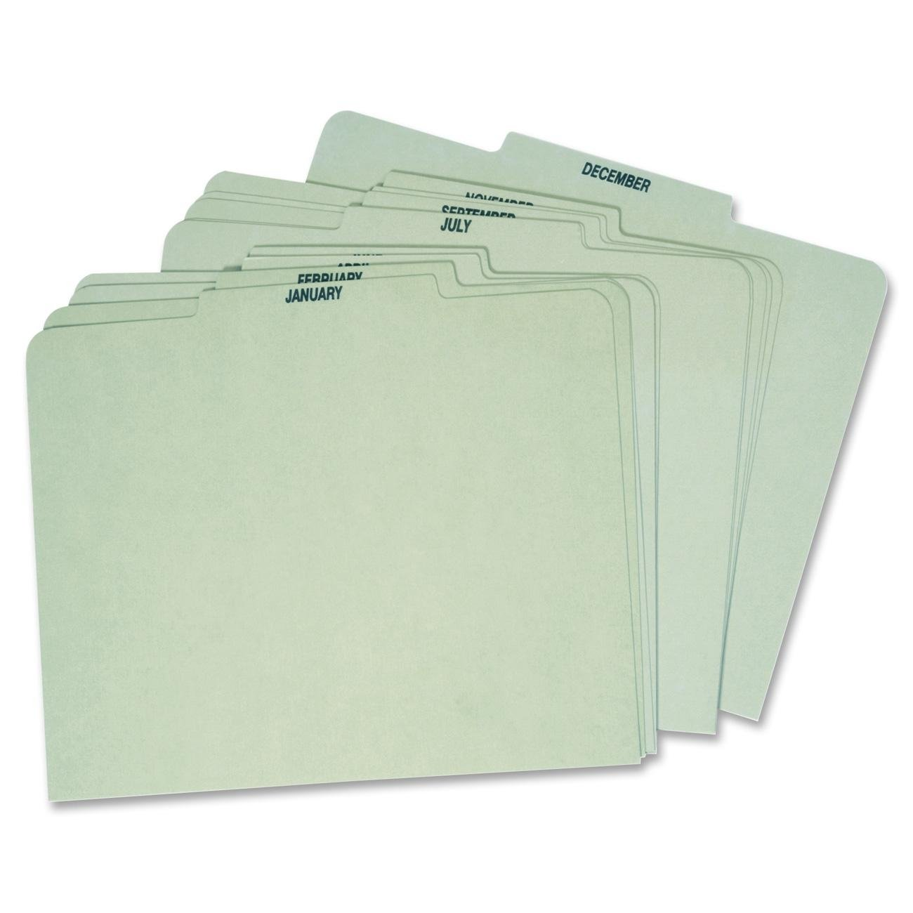 Globe Weis Month Guides, January to December, 1/3 Cut Center Tabs, Letter Size, Light Green (12PX91) Globe-Weis