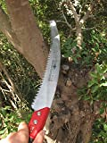 TABOR TOOLS TTS13 Pruning Saw for Trimming Tree Branches & Clearing Forest Trails, 13' Curved Steel Turbocut Pull-Action Blade, Your Next Professional Pruning Tool!