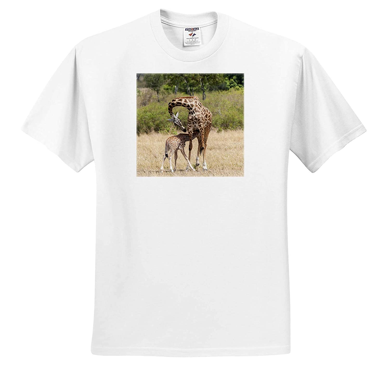 ts/_310436 Kenya Mother Giraffe Giraffes Baby Feeding 3dRose Danita Delimont Adult T-Shirt XL