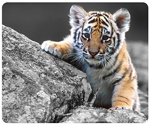 Cute Tiger Cub Customized Rectangle Mousepad, Gaming Mouse Pad Mouse Mat