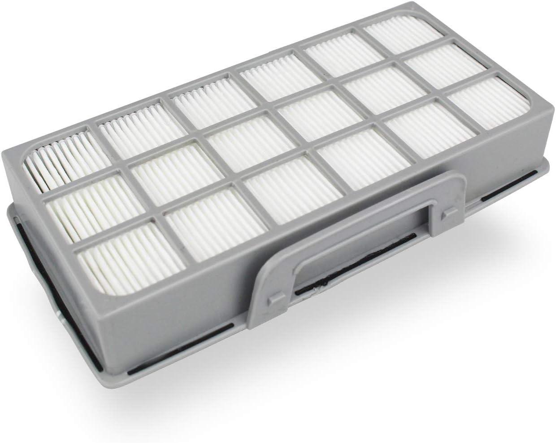 Filtro Adecuado Rowenta RO 6941 EA X-Treme Power: Amazon.es: Hogar