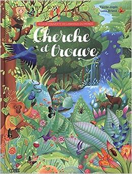 Amazon Fr A La Decouverte Des Animaux Cherche Et Trouve