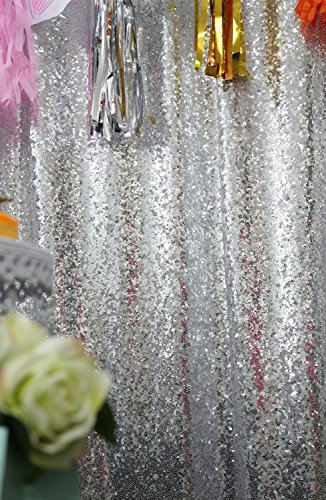 ShiDianYi 4FTX6FT Silver SEQUIN BACKDROP Photography Background