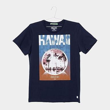 5d3683111 Camiseta Infantil Colcci Hawai Masculina - Azul - 14: Amazon.com.br ...