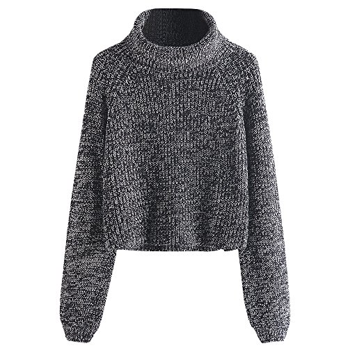 DEZZAL Women's Loose Turtleneck Heathered Chunky Pullover Knit Sweater (Chunky Pullover)