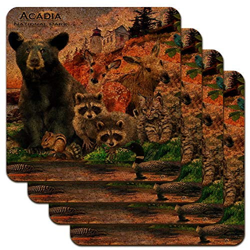 Acadia National Park Maine ME Animals Bear Racoon Deer Moose Low Profile Novelty Cork Coaster Set ()
