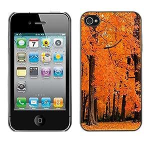"For Apple iPhone 4 / 4S , S-type Naturaleza Orange maderas"" - Arte & diseño plástico duro Fundas Cover Cubre Hard Case Cover"