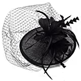 NACOLA Women Fascinators Hat,Party Wedding Headwear Hats Mesh Ribbons Feathers Veil Hair Clip