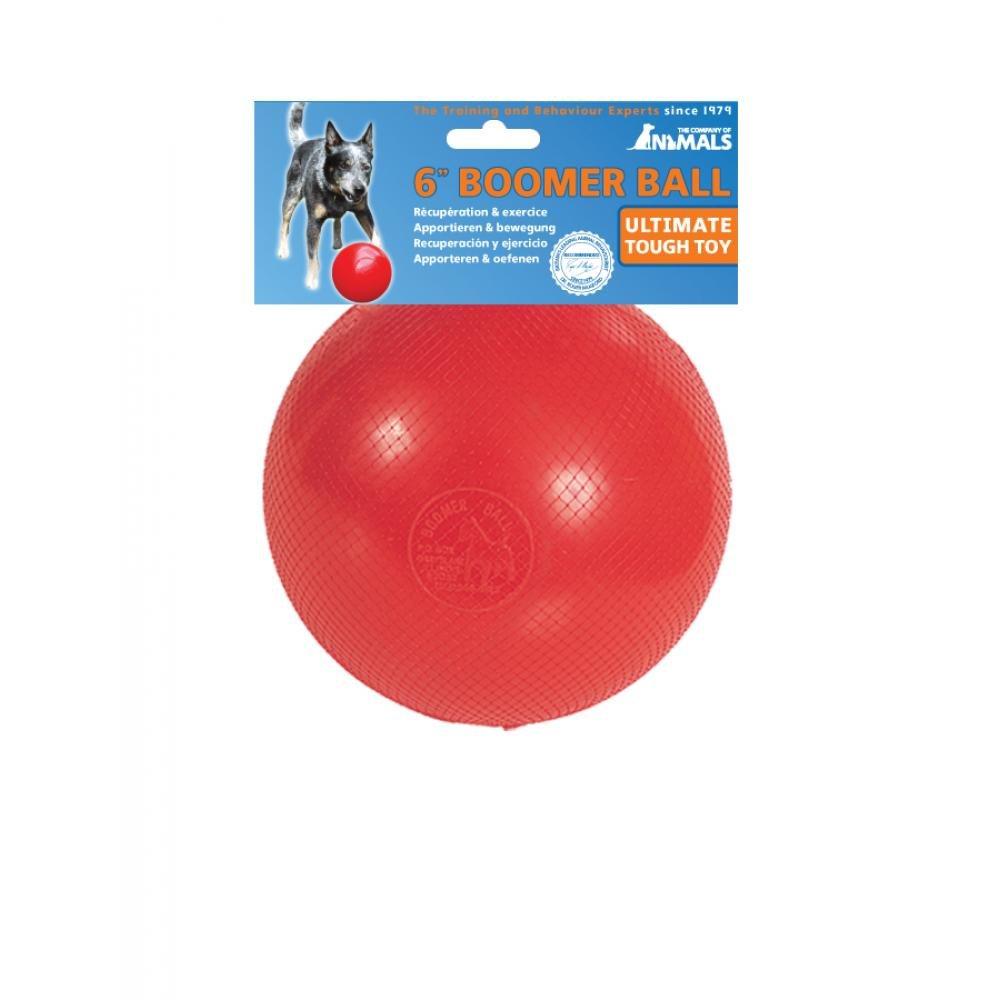 Pelota Boomer Ball indestructible de juguete para perros (25,4 cm ...