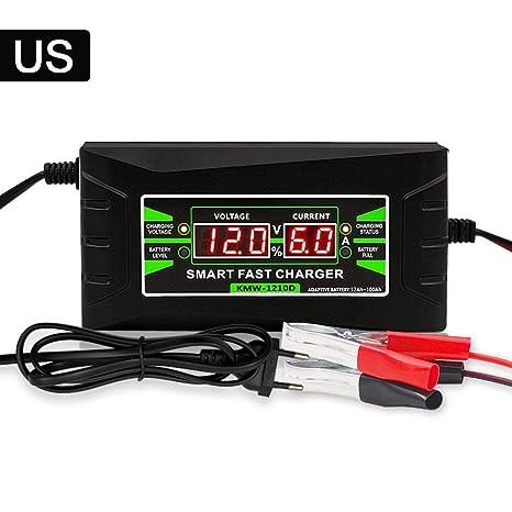 Waysad - Cargador de batería para Coche Inteligente (12 V, 6 ...