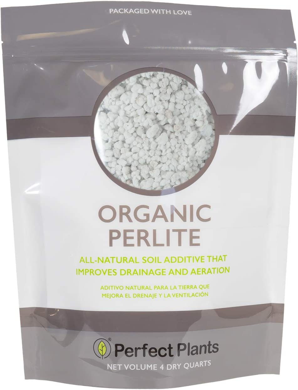 Organic Perlite by Perfect Plants — Add to Soil for Indoor & Outdoor Container Plants for Drainage Management and Enhanced Growth (4qts.)