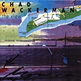 The View by Chad Wackerman (1993-10-14)