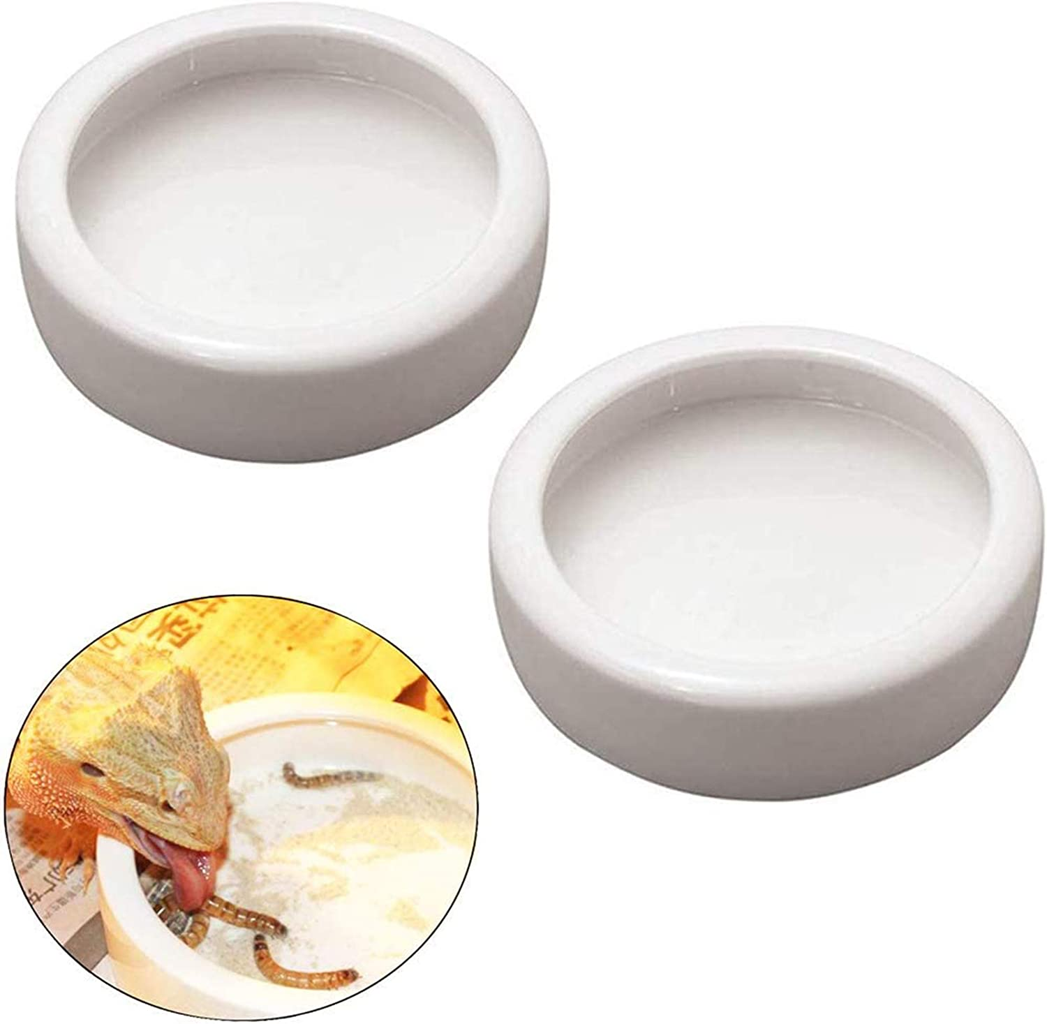 Orgrimmar 2 Pack Reptile Food Bowl Lizard Gecko Food Water Dish Bearded Dragon Feeding Dish, Ceramics Worm Dish for Lizard Anoles Bearded Dragons