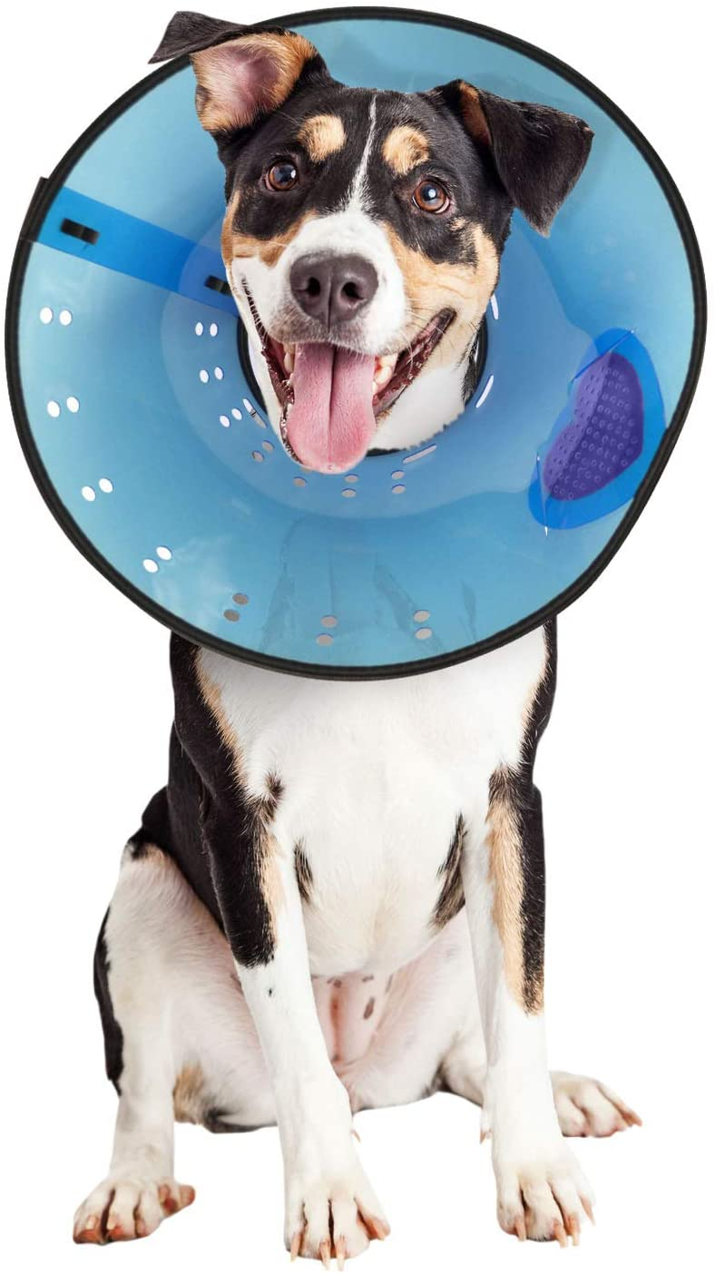Medium Calm Paws Dog Caring Collar with Calming