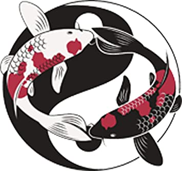Pretty Black And White Pink Koi Fish Yin Yang Sign Symbol Icon Vinyl Decal Sticker 4 Wide Amazon Com