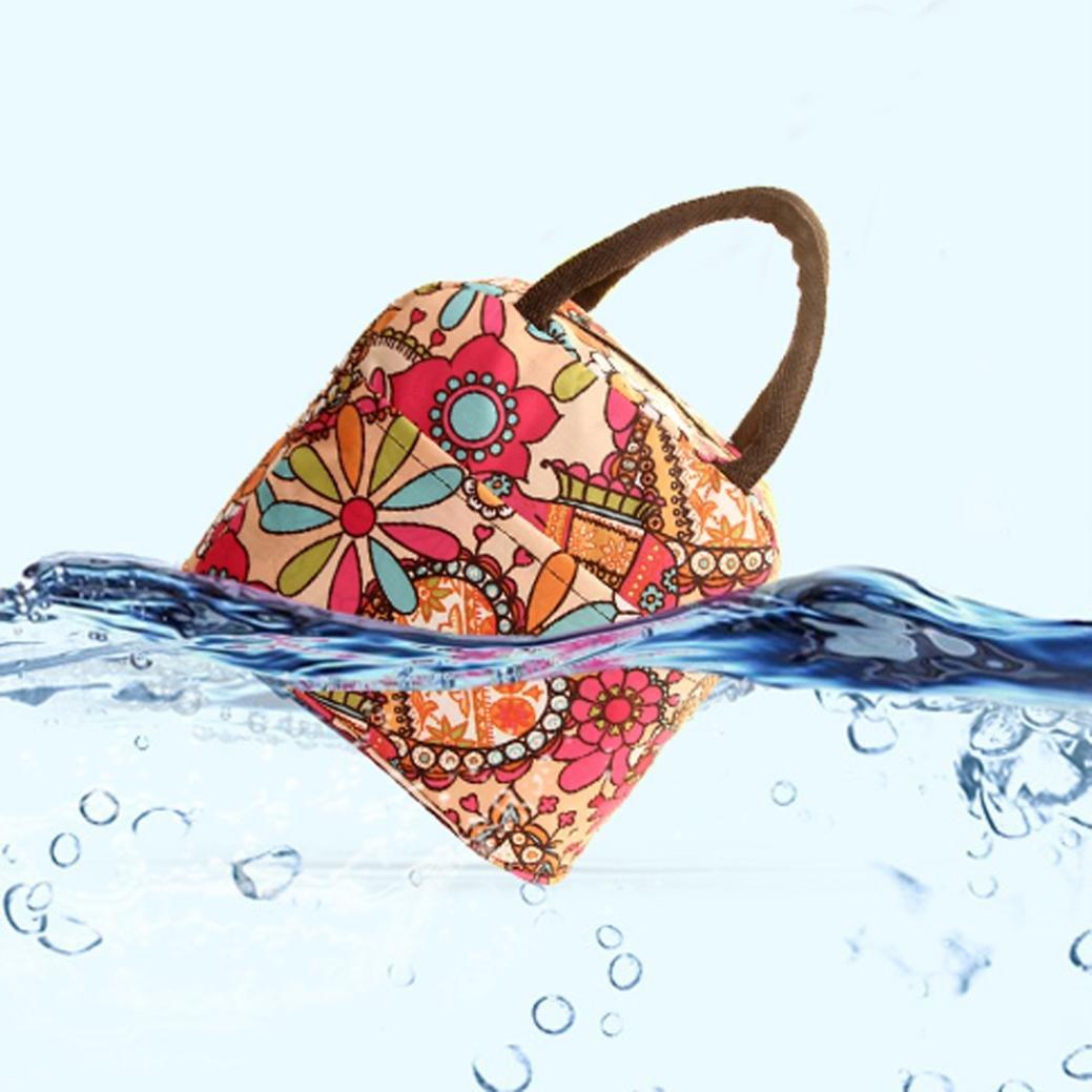 Bolsas de almuerzo, Termal aislados Tote Picnic almuerzo Cool Bolsa nevera caja bolso bolsa LMMVP (D, 32*22*10cm): Amazon.es: Hogar