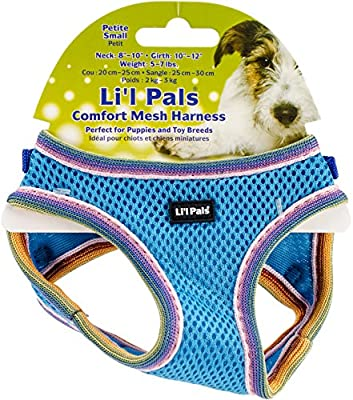 Coastal Pet Products 16383 BLLPSM - Arnés para Perro, 20-25 cm ...