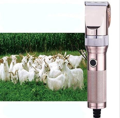 STEAM PANDA Máquina de Afeitar para Mascotas Máquina de Afeitar Máquina de Afeitar Perro de Pelo