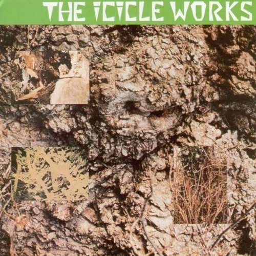 the Icicle Works: The Icicle Works (Audio CD)