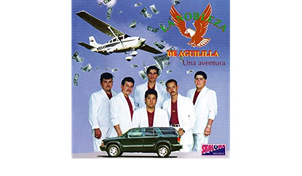 Dos Gatos de Agua by La Nobleza De Aguililla on Amazon Music - Amazon.com