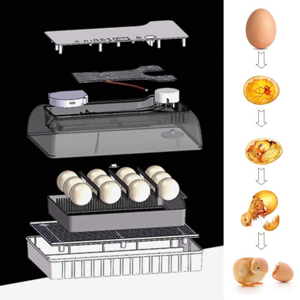 Alley.L Incubadoras de Huevo con Giro autom/ático de Huevos Incubadoras autom/áticas Incubadora de Huevos para Pollo Pato codorniz Brids Aves de Corral Hatcher EU