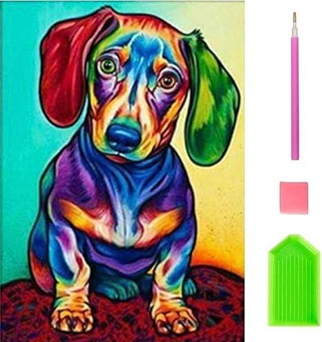 Amazon Com Oway Diamond Painting Kits For Adults Colorful Dog 5d Diamond Painting Kits Paint With Diamonds Kits Art Craft For Wall Decor 12x16inch Everything Else