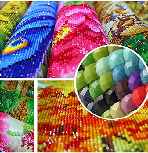 Huayi Wang DIY 5D Diamond Painting Full Drill Hummingbird Garden Embroidery Cross Stitch Craft Canvas Wall Decor 12X16 inches
