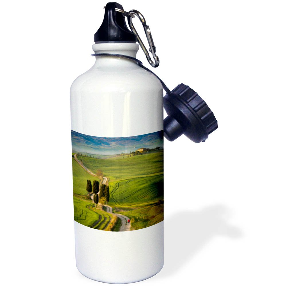 3dRose Danita Delimont - Italy - Cypress trees and winding road to villa near Pienza, Tuscany, Italy - 21 oz Sports Water Bottle (wb_277543_1)