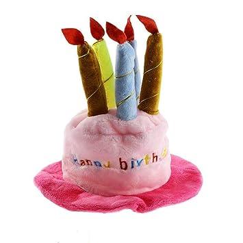 LANGING - Gorro de cumpleaños para Perro con diseño de Velas ...
