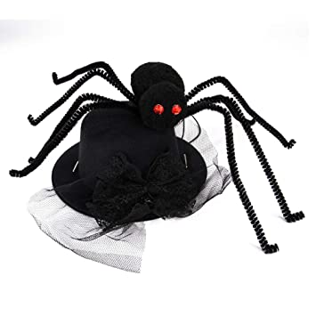 Amazon Com Hdmy Pet Cute Spider Hat Pet Halloween Party Hat