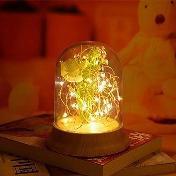 OOFAY Luces LED De Hada Solares para Decoración De Jardín ...
