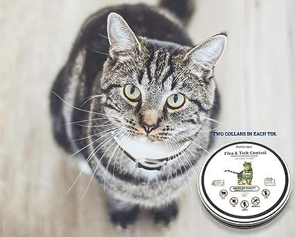 Amazon.com: Collar de pulgas de gato orgánico para mascotas ...