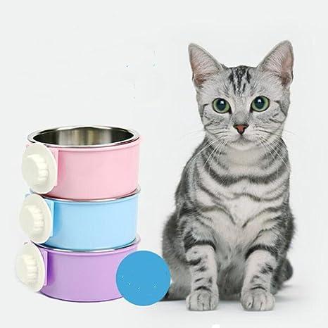 Cuenco para perro, papelería, cuenco colgante para gatos, cuenco para perro, cuenco