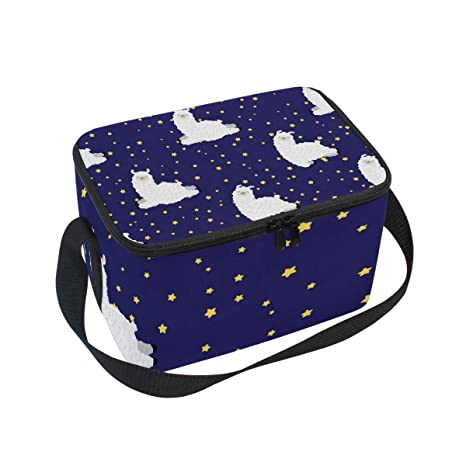 0e402c7b23aa Amazon.com: Insulated Lunch Bag Box Cooler Bag Reusable Tote Bag ...
