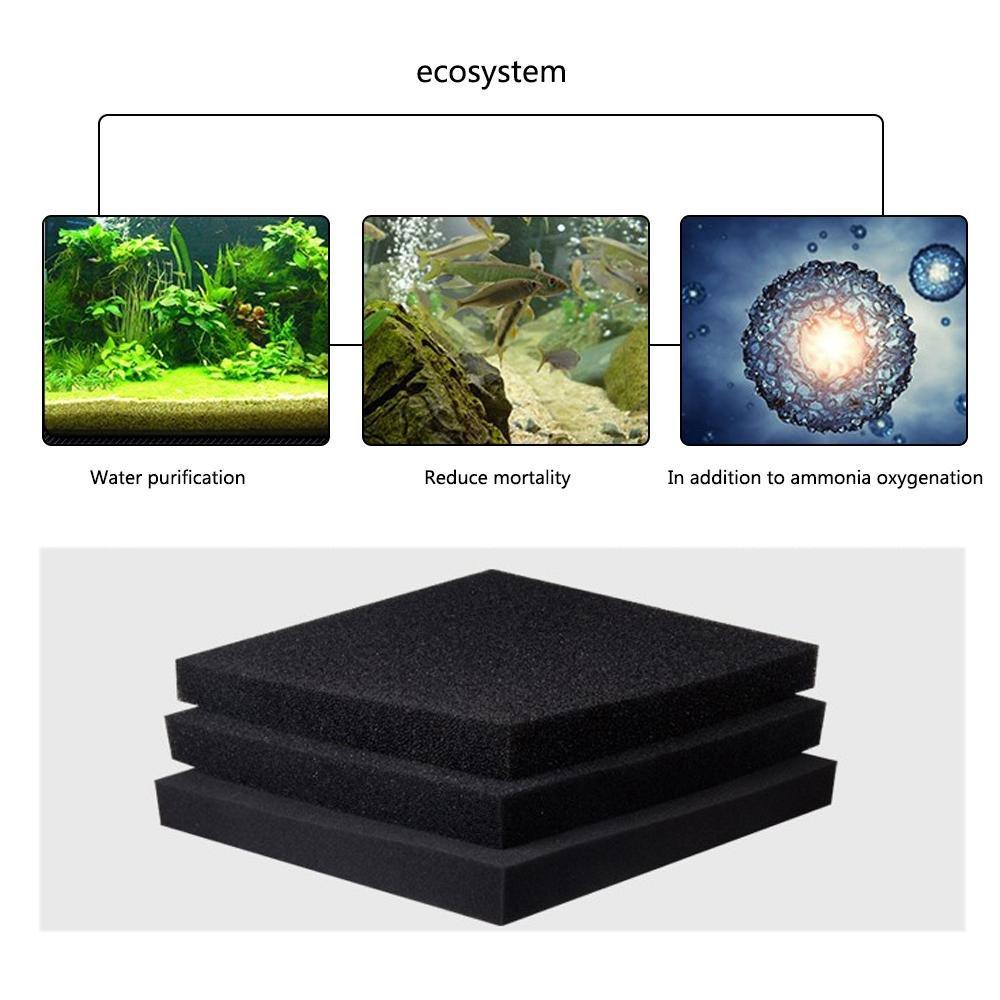 KOBWA Filtro de Esponja de Espuma para Acuario, 50 x 50 x 2 cm, bioquímico y de Algodón: Amazon.es: Productos para mascotas