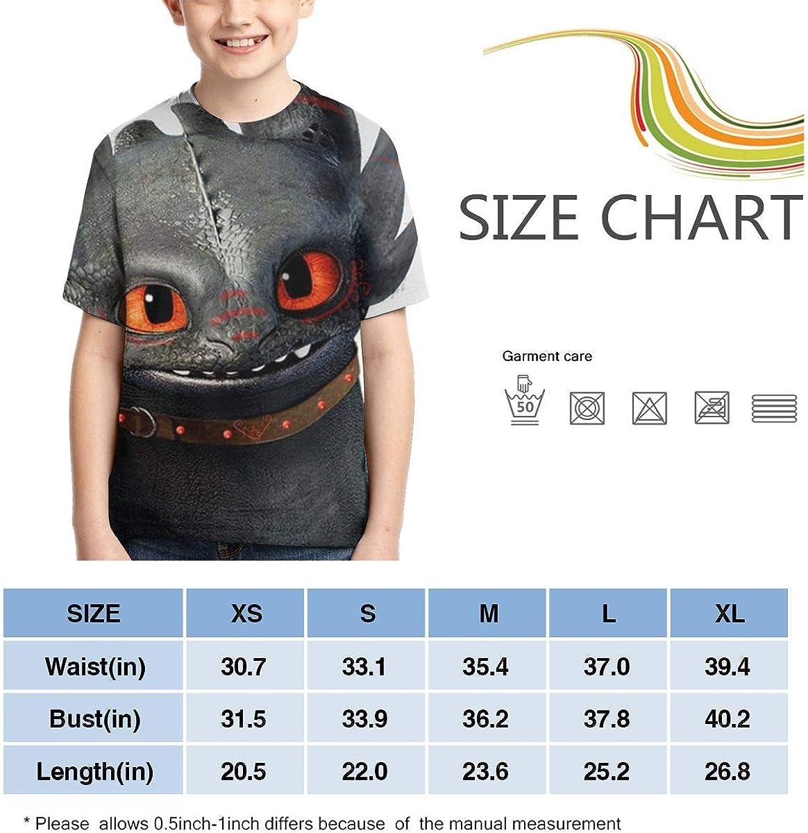 Traci StoneN Kid//Youth Night Fury T-Shirts 3D Print Short Sleeve Graphics Tees for Boys