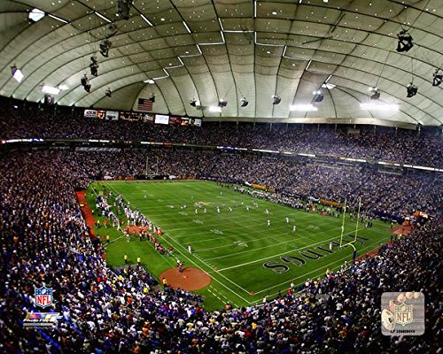 Minnesota Vikings Metrodome Stadium Photo (Size: 8