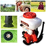 GDAE10 Agricultural Mist Duster Sprayer,43CC Gasoline Powered Knapsack Blower Machine Powered Knapsack 3WF-3A Mosquito Cold Fogger Backpack Sprayer (US Stock)
