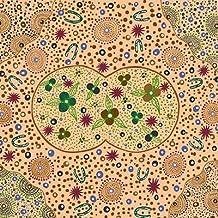Australian Aboriginal fabric, Bush Food Dreaming Ecru by Tanya Price