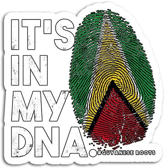 Decal Stickers for Laptop Sticker for Tumblers in My DNA Guyana Flag Guyanese Roots Waterproof Decal Perfect for Phone Water Bottle Vehicles (5 Pcs/Pack)