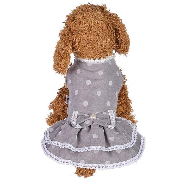 Amazon.com: Photno vestido de perro mascota lindo ropa ...