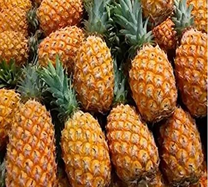 pineapples seeds