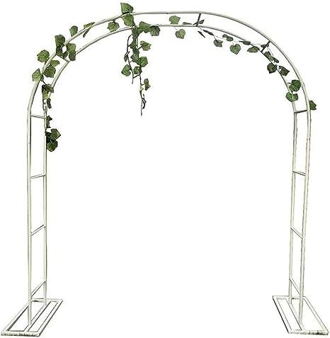 Puerta de arco de jardín para plantas y escalada de flores ...