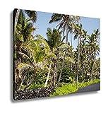 Ashley Canvas, USA Hawaii Big Island Punaluu Beach, Home Decoration Office, Ready to Hang, 20x25, AG6409351